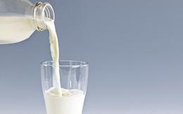 Uống nhiều sữa có tốt hay không?