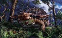Bữa ăn cuối cùng của khủng long bọc thép sau 110 triệu năm vẫn nguyên vẹn: Hóa thạch trong mơ