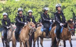 Chức năng, nhiệm vụ của đoàn Cảnh sát Cơ động Kỵ binh là gì?