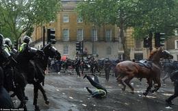 Ngựa phát hoảng phi nước đại làm nữ cảnh sát Anh đập người vào đèn giao thông, ngã dập phổi