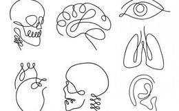 Người lãnh đạo điều hành được các quy trình phức tạp sẽ chọn hình bộ não, bạn thì sao?