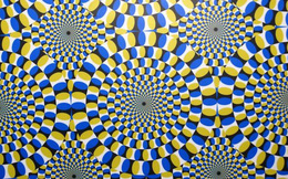 Trí não bạn hẳn đang căng thẳng nếu thấy điều này trong hình!