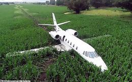 Vệt bùn dài thẳng tắp trên cánh đồng bắp vinh danh phi công tài ba