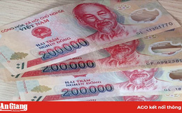 Trợ cấp Tết Nguyên đán Canh Tý 2020 800.000 đồng/người