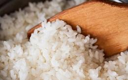 Vì sao không nên ăn cơm nguội?