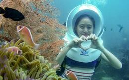 Màn 'rút ví' của Shark Việt đầu năm mới khiến du lịch Phú Quốc thêm nóng: Đầu tư vào DN cung ứng dịch vụ 'Đi bộ dưới đáy đại dương'