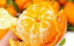 7 thực phẩm giúp trị cảm lạnh hiệu quả