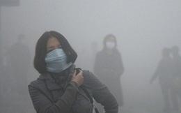 Nhà máy điện than sẽ làm tăng 19.223 'cái chết sớm' ở Việt Nam vào năm 2030
