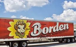 Thêm một công ty sữa hàng đầu nước Mỹ nộp đơn xin phá sản