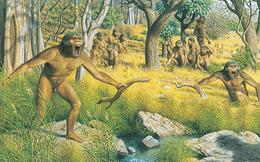 Những người anh em họ bất hạnh của loài người đã biến mất trước bình minh của nền văn minh như thế nào?