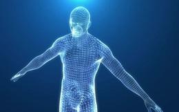 Những sự thật bất ngờ và thú vị về cơ thể con người
