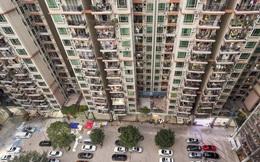 Xe đạp, dao làm bếp, phân chó: Những hiểm họa rơi xuống từ các tòa chung cư cao tầng ở Trung Quốc khiến người dân khiếp đảm