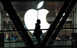 Thêm một đối tác lắp ráp iPhone cho Apple chuyển sản xuất sang Việt Nam