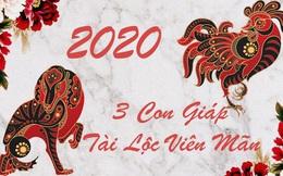 """3 con giáp không được """"ngồi mát ăn bát vàng"""" nhưng được tài lộc tỏa sáng sau những nỗ lực không ngừng trong năm 2020"""