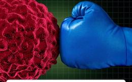 Nên ăn gì để tăng cường miễn dịch ngay đầu năm Canh Tý?