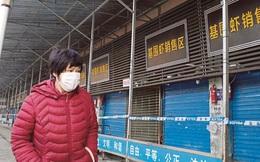 Khu chợ được cho là ổ dịch bệnh viêm phổi Vũ Hán từng treo bảng bán đủ loại thịt động vật hoang dã từ cáo, cá sấu đến dơi, chuột
