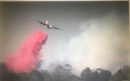 Máy bay cứu hỏa rơi ở Australia, ba người Mỹ thiệt mạng