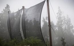 Lưới bắt sương để lấy được nước: công nghệ đơn giản có thể thay đổi cuộc sống của cả triệu người