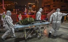 TổngGiám đốc WHO tới Trung Quốc thảo luận kiểm soát dịch, nhiều quốc gia chuẩn bị sơ tán công dân