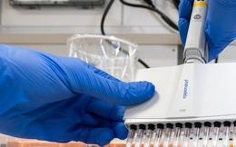 3 loại thuốc có thể điều trị virus corona được Nga công bố giữa cơn bùng phát dịch bệnh