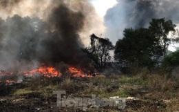 Rừng trên đất quốc phòng ở Bình Dương bốc cháy dữ dội
