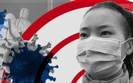 Bộ Tư pháp đề nghị nóng liên quan đến dịch virus corona