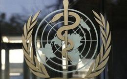 Giữa đại dịch virus corona, tranh cãi ai có công trong động thái bất ngờ của Đài Loan với WHO