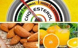 Giúp bạn kiểm soát tốt Cholesterol