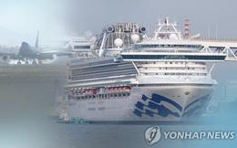 Hàn Quốc điều chuyên cơ Tổng thống tới Nhật Bản sơ tán công dân trên du thuyền Diamond Princess