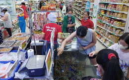 """VinMart """"giải cứu tôm hùm"""": Tuyên bố bán hàng không lợi nhuận, hỗ trợ nông dân ảnh hưởng bởi dịch Corona, giá chỉ 495 ngàn đồng/kg"""