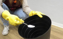 Cách đơn giản để giúp các thùng rác nhà bạn khỏi mùi khó chịu và sạch bóng côn trùng