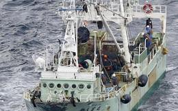 Danh tính 5 thủy thủ Việt Nam mất tích trong vụ chìm tàu ở Nhật Bản
