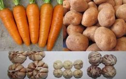 Tuyệt chiêu để phân biệt rau củ Trung Quốc và Việt Nam cho các bà nội trợ