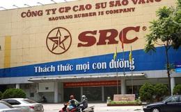 Cao su Sao Vàng cùng với Hoành Sơn thành lập công ty vốn 500 tỷ đồng