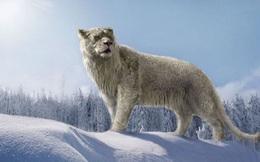 Sự tuyệt chủng của những loài động vật có vú lớn tại Bắc Mỹ đã mang tới hậu quả gì?