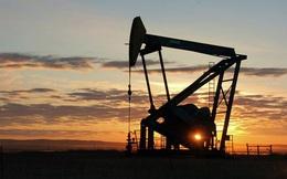 """Hé lộ """"vũ khí bí mật"""" của Nga trong cuộc chiến tranh dầu mỏ"""