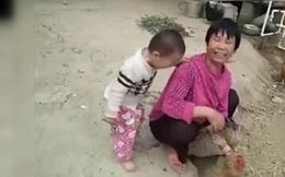 Bé trai 3 tuổi khóc nằng nặc không cho làm thịt gà, ai cũng bật cười vì bà đã trói chặt gà trong tay nhưng đành chịu thua cháu