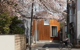 Căn nhà cấp 4 với thiết kế ấm cúng, lãng mạn bên cây hoa anh đào nở rộ của đôi vợ chồng 40 tuổi