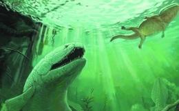 Rhizodus hibberti : Quái vật kinh hoàng của kỷ Carbon