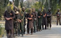 Afghanistan hoãn kế hoạch phóng thích tù nhân