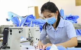 Mất việc làm vì dịch Covid-19 hoàn toàn có thể được hưởng trợ cấp thất nghiệp