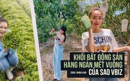 Mục sở thị bất động sản chục ngàn mét vuông của sao Việt: Toàn để trồng rau nuôi cá, Lý Nhã Kỳ có khu đất như nông trại