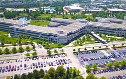 Công ty vô danh bỗng chốc trở thành 'phao cứu sinh' của hàng triệu người Mỹ trong đại dịch Covid-19