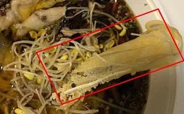 """Gọi đồ ăn về nhà, hai vợ chồng tá hỏa phát hiện có """"khẩu trang luộc"""" bên trong, nhà hàng sau khi nhận lỗi lại đột nhiên trở mặt"""