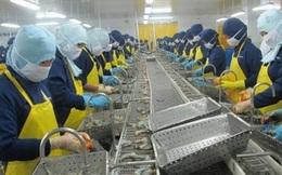Nhiều doanh nghiệp thủy sản chưa có đơn hàng mới trong quý II và III
