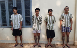 Nhóm đối tượng nghiện ma túy sử dụng taxi và mã tấu trộm cắp liên tỉnh