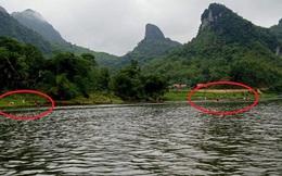 Cá tự nhiên chết bất thường dọc sông
