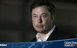 Bị chỉ trích vì quyên góp máy thở cấp thấp, cho rằng đang 'PR trá hình', Elon Musk chính thức lên tiếng