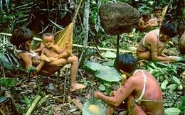 Bộ lạc kỳ dị ở Nam Mỹ: Cuộc sống khép kín và hủ tục mai táng bằng cách ăn tro cốt của người chết