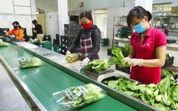 Sản xuất, tiêu thụ nông sản thời Covid-19: Cơ hội đẩy mạnh mối liên kết